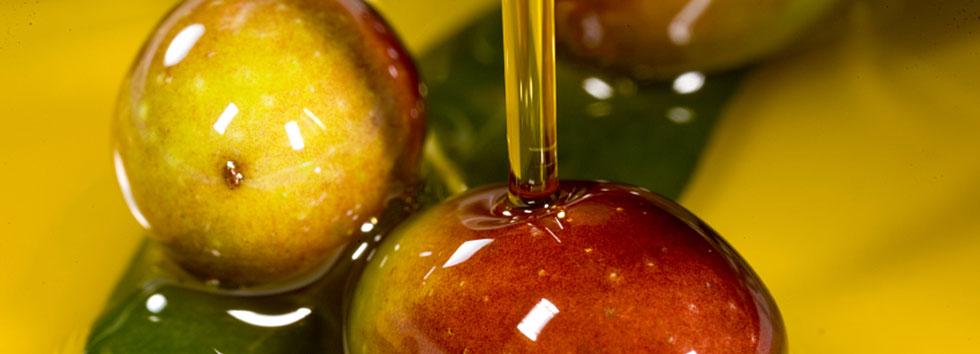 huile olive de producteur d